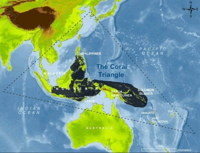 Coral_triangle_map