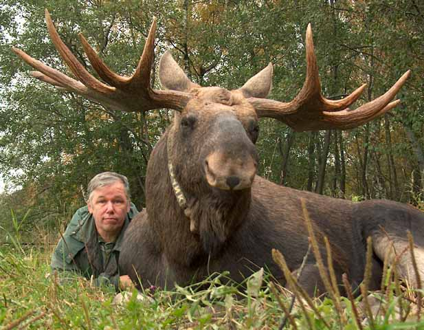 Luchik_the_Moose_and_Dr_Minaev