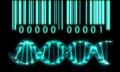 Gene_patents
