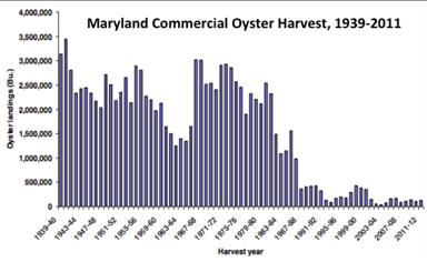 Maryland_oyster_harvest
