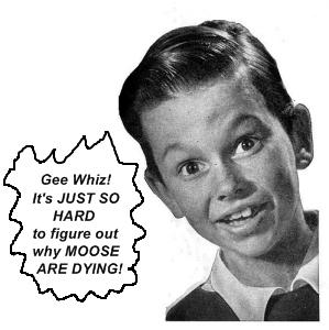 Gee_whiz_moose