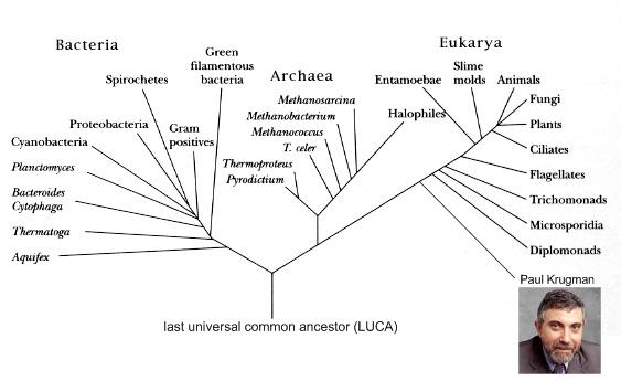 Phylogenetic_tree_of_life_edit