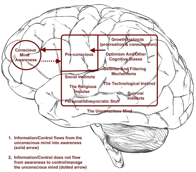 Flatland_brain