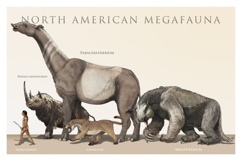 North_american_megafauna