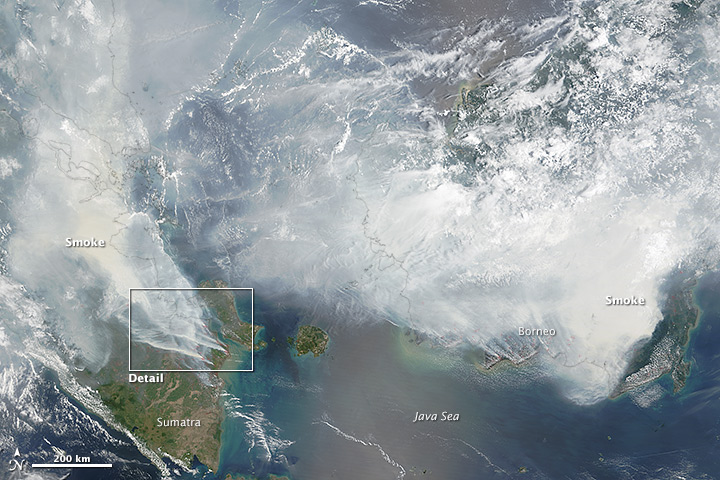 Indonesia_fires_sept_2015