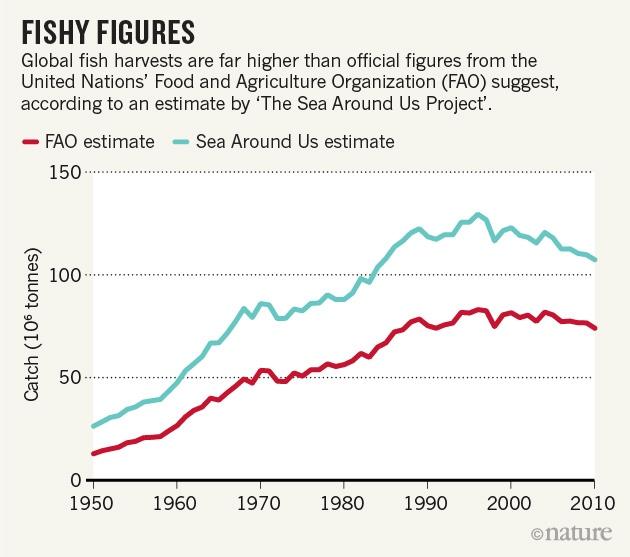 Fishy-figures-pauly-zeller