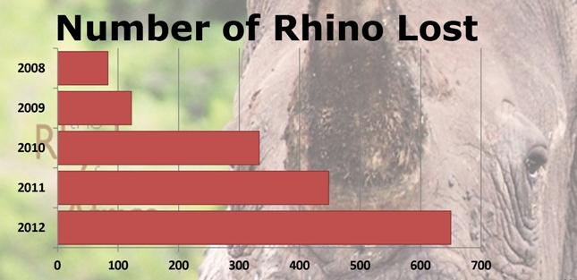 Rhino_lost_2012